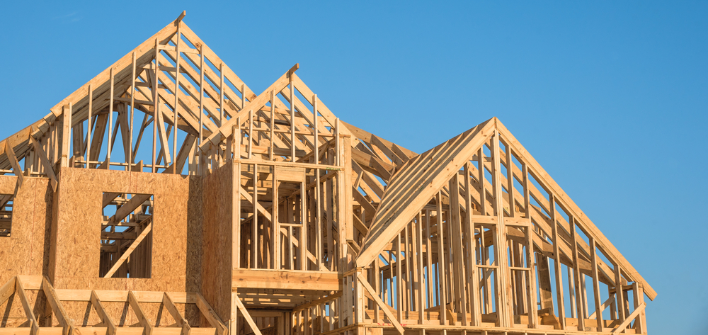 Wooden homes framing | AGACAD